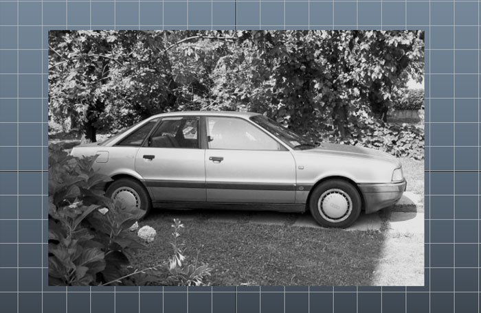 image of the texture converted in black and white with color remapping